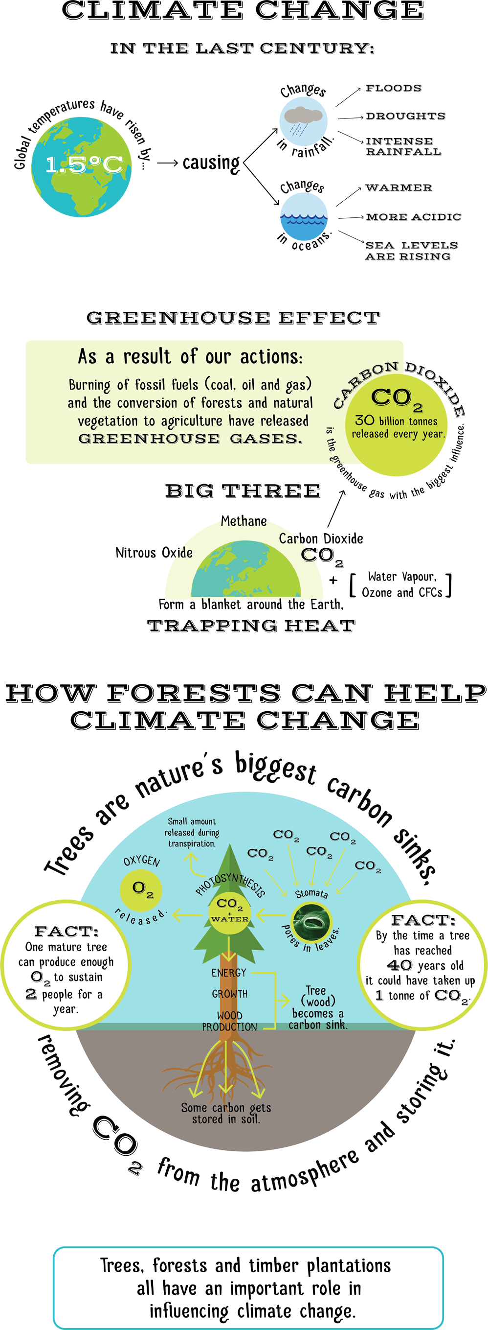 008 Forests and climate change WEB