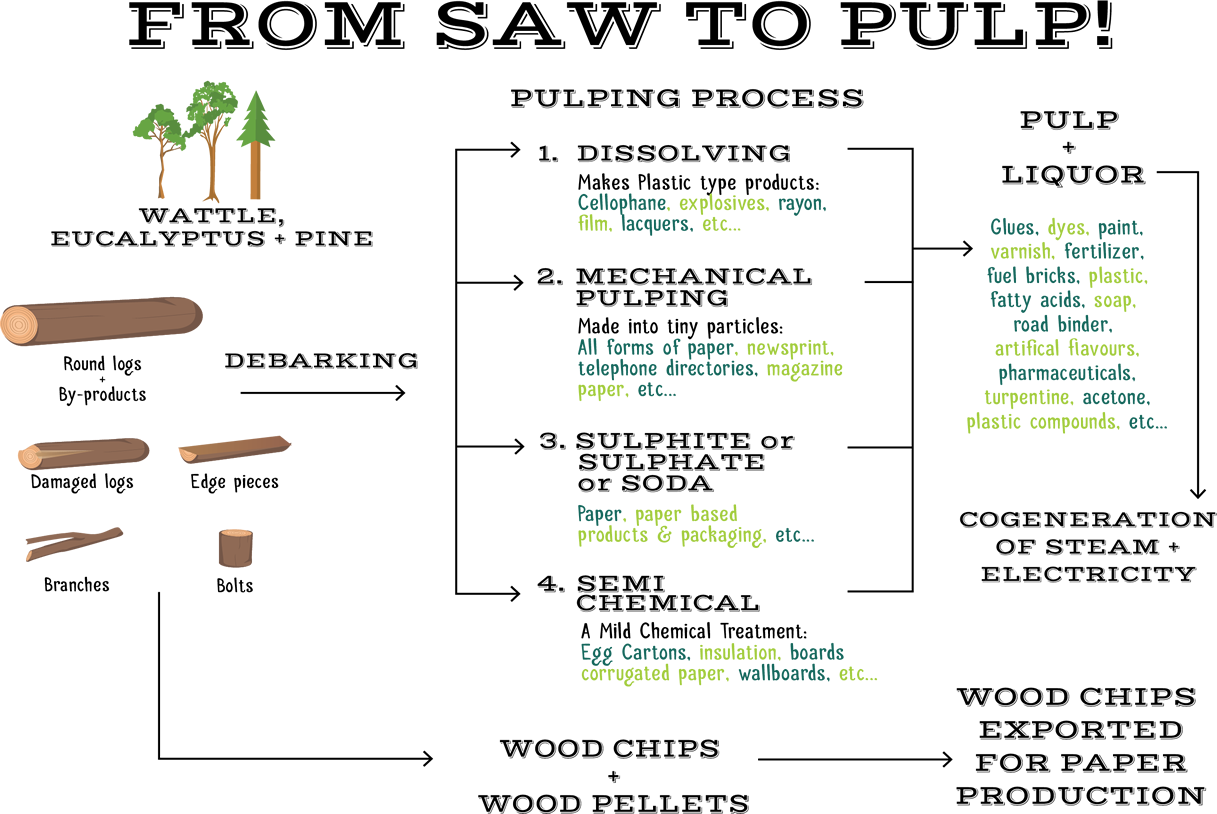 Pulping Process