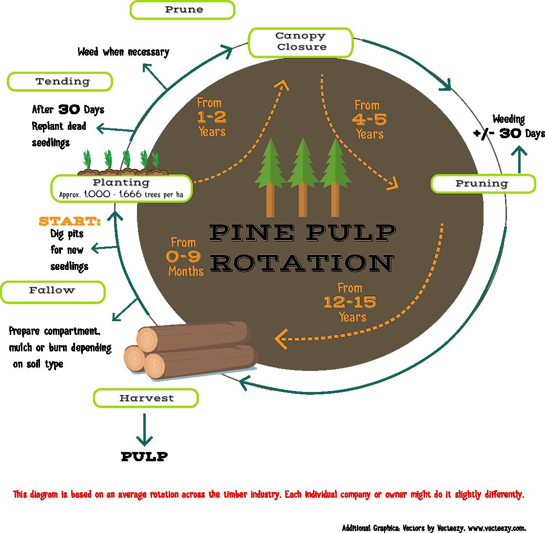 Rotations 002