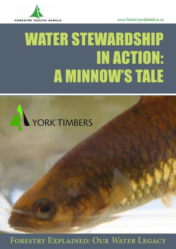 http://forestryexplained.co.za/wp-content/uploads/2017/12/YORK-MINNOWS-TALE-WEB-VERSION_001-724x1024.jpg