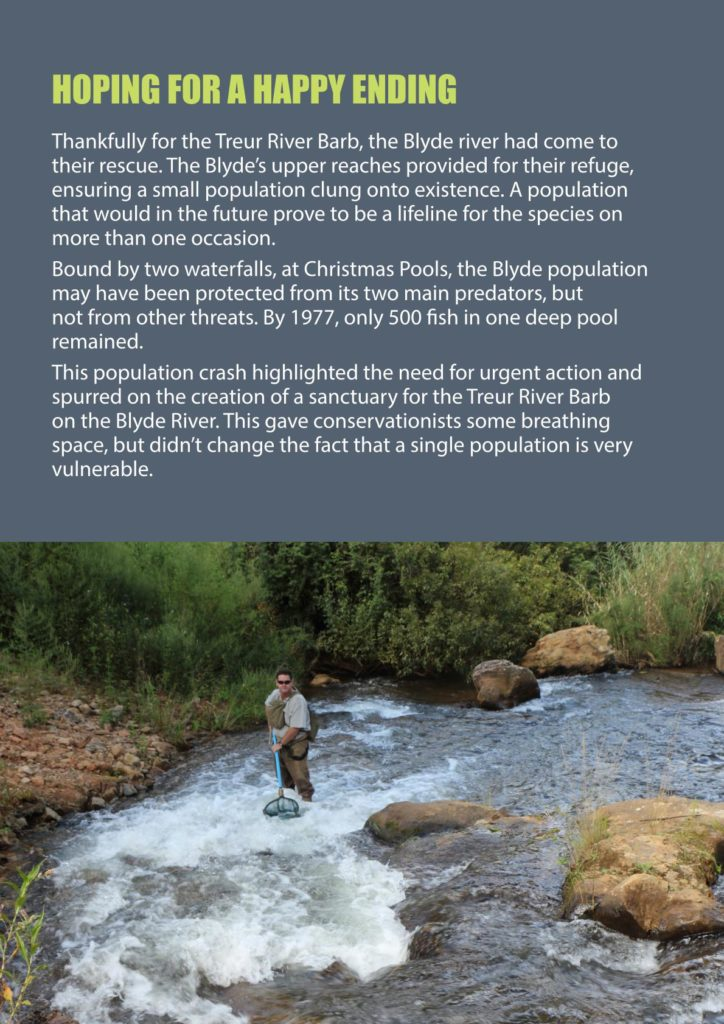 https://forestryexplained.co.za/wp-content/uploads/2017/12/YORK-MINNOWS-TALE-WEB-VERSION_004-724x1024.jpg