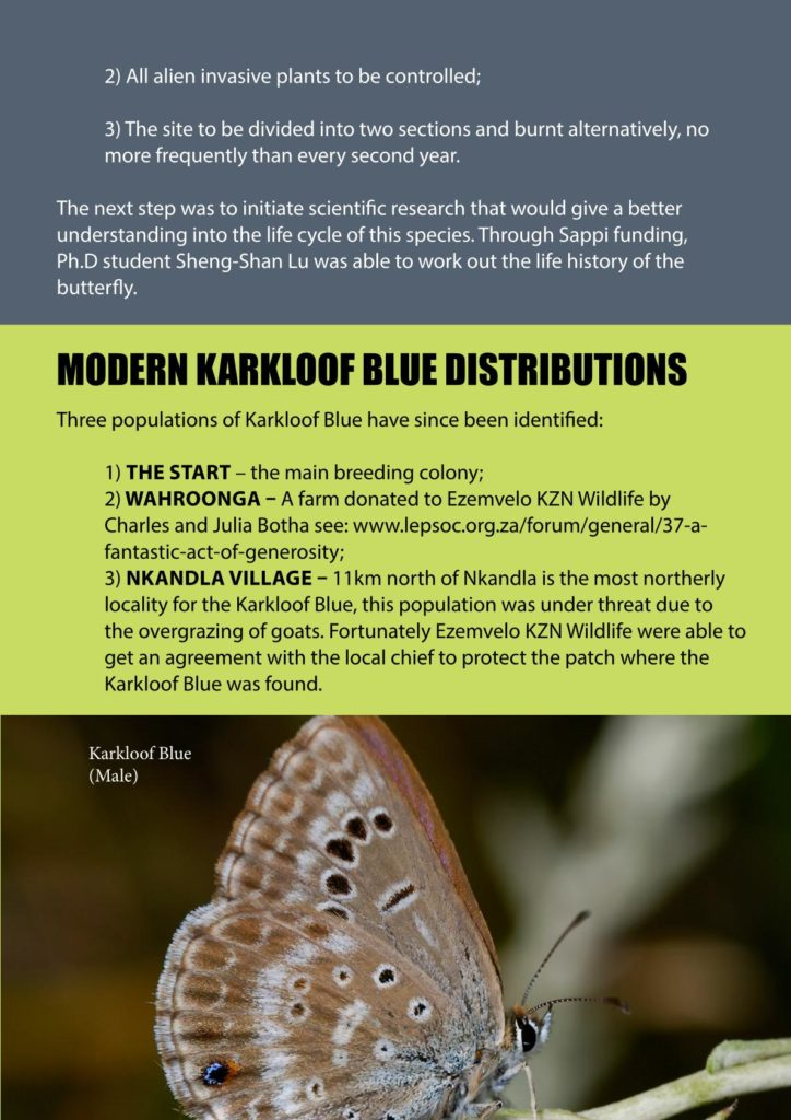 https://forestryexplained.co.za/wp-content/uploads/2018/01/Butterflies-Sappi-011-724x1024.jpg