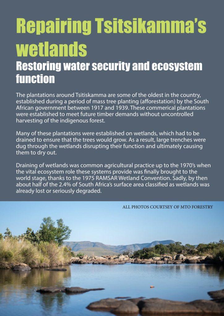 https://forestryexplained.co.za/wp-content/uploads/2018/02/02-724x1024.jpg