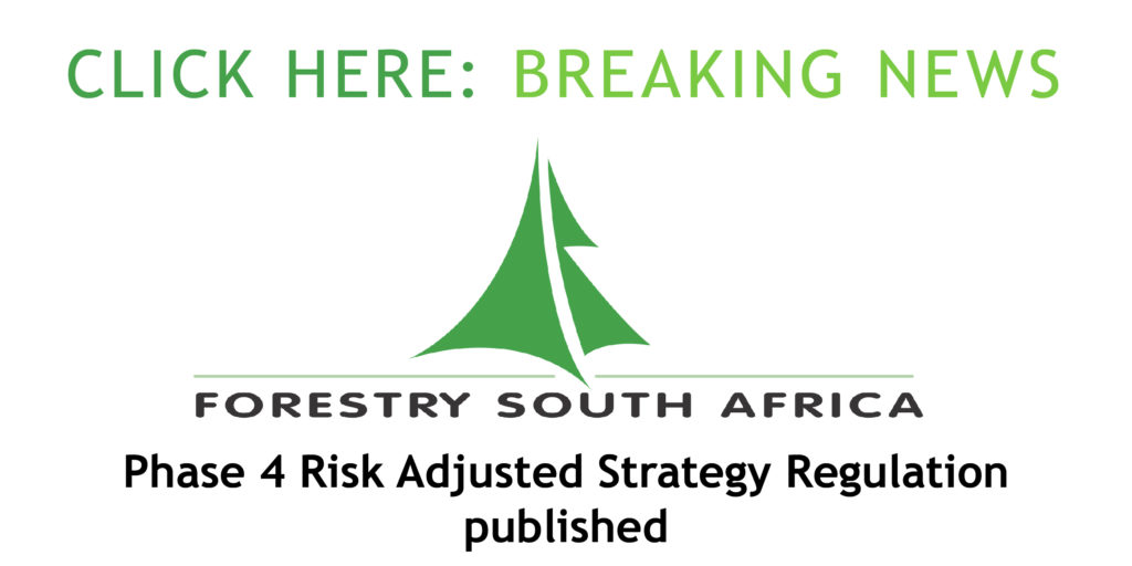 Phase 4 Risk Adjusted Strategy Published-01